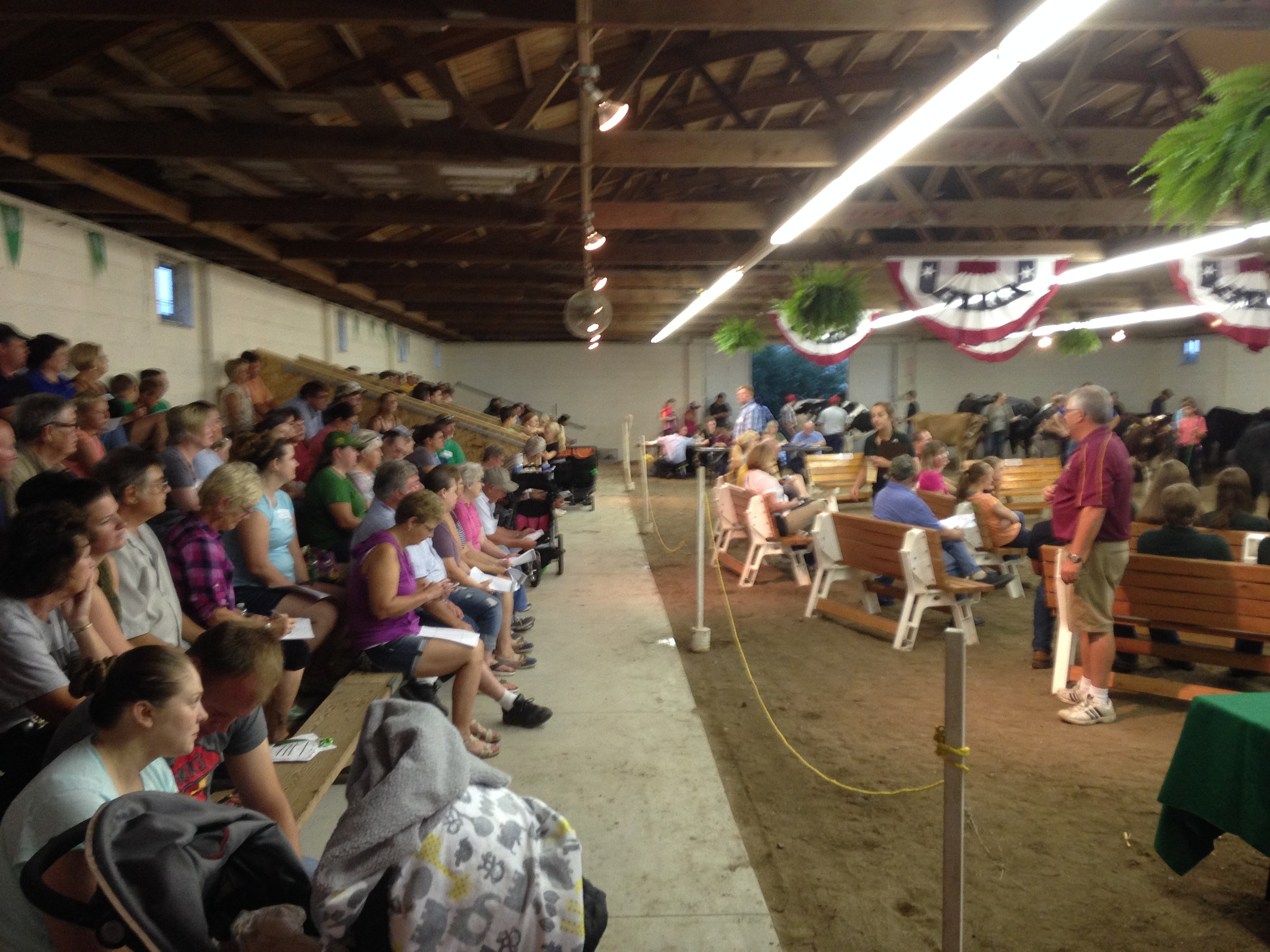 Rice County 4-H Livestock Auction Crowd