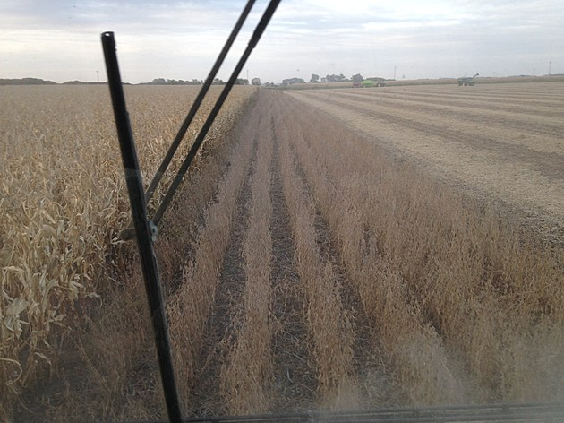 combining beans last pass